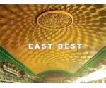 Metallic Stretch Ceiling - EB005
